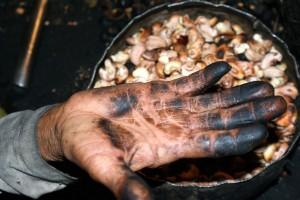 crianças adolescentes digitais ácido castanha trabalho infantil crime Rio Grande do Norte