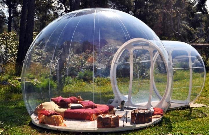 Bolhas dormitórios na natureza