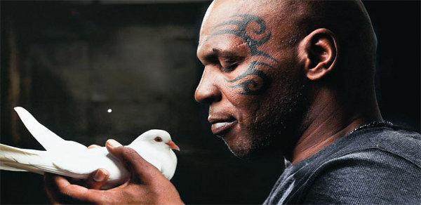 Mike Tyson revela que ex comeu um de seus pombos de estimação