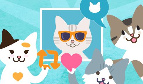 Catmoji é a primeira rede social para amantes de gatos