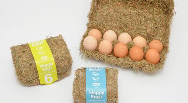 Estudante de design cria embalagem de ovos inspirada em ninho