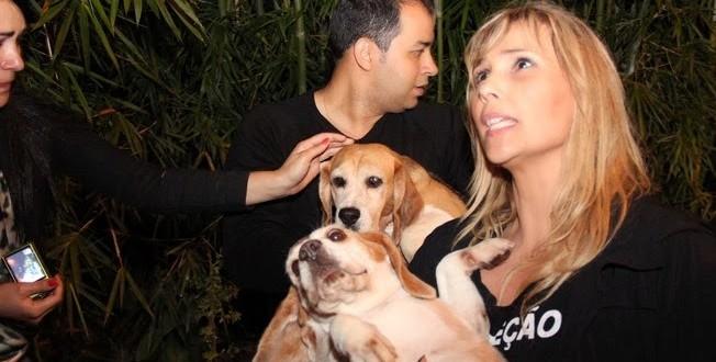 Ativistas resgatam cães de laboratório de testes em São Roque (SP)