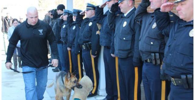 Cão policial recebe despedida de herói antes de ser sacrificado nos EUA