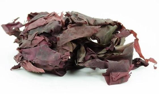 Cientistas criam alga com gosto de bacon e mais saudável que legumes